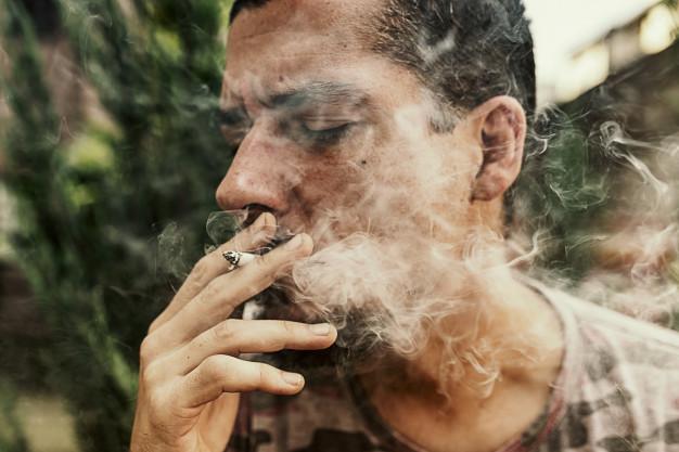 Photo of Vicios y su relación con el equilibrio y las drogas que elegimos